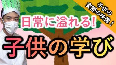 """【育児の魅力!】日常に溢れる子供の学び! ~""""おおきな木""""の子供の一日より~"""